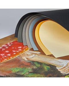 Tiziano Pastel Paper 650 x 500mm Assortment. Pack of 10
