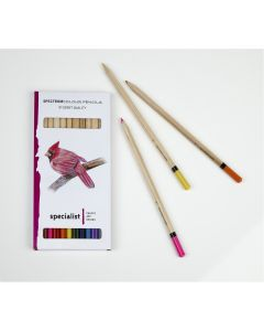Spectrum Colour Pencils Individual Colour Packs